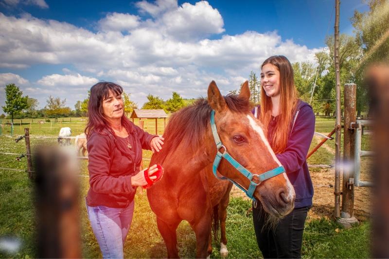 Pferdegnadenhof Mona und Freunde